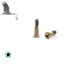 Closing Screws - Gold - iP6/6+/6S/6S+ QON